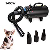 Topwill Hundefön Tierfön Hundetrockner, Pet Trockner Low Noise(60 dB) Hundepflege Haartrockner Pet Trockner für Haustiere(Schwarz/Gelb) (2400W)
