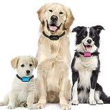 Antibell Halsband Hund Gerät zum Stoppen von Hundebellen OHNE SCHOCK SPRAY! SICHER HARMLOS Anti-Gebell Training mit Ton Vibration für kleine mittlere Große Rassen Erziehungshalsband hundehalsband... (1)