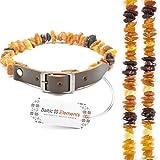 Bernsteinhalsband Hunde, Bernsteinkette Hund & Katze, Zeckenschutz Hunde & Katze, Baltischer Bernstein roh aus Litauen, Bernsteinkette für Hunde