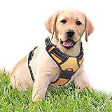 rabbitgoo No-Pull Hundegeschirr für Kleine Hunde Welpengeschirr Einstellbar Weich Geschirr Sicher Kontrolle Brustgeschirr Gepolstert Dog Harness Orange S
