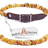 Baltic Secret Bernsteinkette für Hund & Katze 100% Echter Baltischer Bernstein/der Natürliche Zeckenschutz/Zeckenschutz Hund/Bernsteinkette Hund/Die Größe 20-22 cm