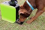 Dot Pet Ballwurfmaschine Apportiermaschine für Hunde inkl. 3 Bälle Automatische Futter-Belohnung Trainings-Spielzeug Hund-erziehung Dog Training