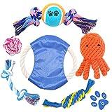 Himeland Hundespielzeug Interaktives Spielzeug für Hunde Kauspielzeug Baumwollknoten Hund Zahnreinigung - 6 Teile