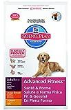 Hill's Canine Adult Large Breed mit Huhn 12kg, 1er Pack (1 x 12 kg Packung) - Hundefutter