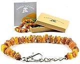 AmberPetCare Bernsteinkette für Hunde und Katzen/Bernsteinhalsband für Hund und Katze/Bernstein Gegen Zecken (35-40)