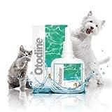 ICF Otodine Hundeohrtropfen zur Ohrreinigung - Antibakterieller & antimykotischer Ohrreiniger für Hunde und Katzen - Enthält Chlorhexidin - Juckreizlinderung - Ohrinfektionen behandeln - 100ml
