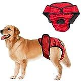 Läufigkeitshose Für Hündinnen Hundewindeln Einstellbare Hundewindeln Pet Windelhose Windel Hündin Hunde-Inkontinenzhose Windeln Medium Size Pants red,l