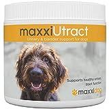 maxxidog – maxxiUtract Preiselbeere Harn- & Blasen-Nahrungsergänzungsmittel für Hunde – Hilft Infektionen des Harnwegs zu verhindern und unterstützt die Gesundheit des Harnsystems – Pulver 150g