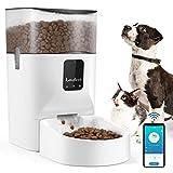 Lewondr 7L Automatischer Futterautomat für Katze und Hund, Futterautomat Katzen mit APP Steuerung,1-12 Portionskontrolle für 1-10 Mahlzeiten täglich,Timer 10s Voice Recorder - Weiß Transparent