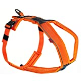 Line Harness von Nonstop, Brustgeschirr, Führgeschirr für Hunde, Größenverstellbar (7, Orange)