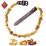 ChronoBalance Bernsteinkette für Hunde - natürlicher Zeckenschutz - Bernstein-Halsband gegen Flöhe - verstellbar, Verschiedene Größen