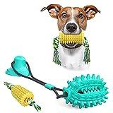 2 Stück Hund Kauspielzeug,Unzerstörbares Hundespielzeug,Multifunktions Pet Spielzeug mit Saugnapf für Aggressive Kauer, Zahnbürsten-Stick,Hundezahnbürste, Kauspielzeug Anzug