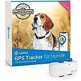 Tractive GPS Tracker für Hunde (2021). Empfohlen von Martin Rütter. Immer wissen, wo Ihr Hund ist. GPS- & Aktivitätstracking