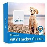 Tractive GPS Tracker für Hunde - Leichter und wasserfester Peilsender mit Echtzeit Ortung und unlimitierter Reichweite