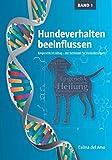 Hundeverhalten beeinflussen: Epigenetik im Alltag – der Schlüssel für Veränderungen