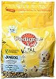 Pedigree Junior Medium Hundefutter Huhn und Reis, 3er Pack