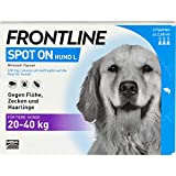 Frontline Spot on Hund L 20-40 kg Pipetten, 3 St. Ampullen
