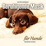 Beruhigende Musik für Hunde (Entspannung für Haustiere)