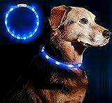Anicoll LED Leuchthalsband Hunde Halsband - blau USB Wiederaufladbar - Längenverstellbarer Haustier Sicherheit Kragen für Hunde und Katzen- 3 Modus 12 Lichte