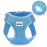 Petcomer Soft Mesh Hundegeschirr No Pull Comfort Gepolsterte Weste für kleine Haustier Katze und Welpen (XS(Chest Size:11-13in), Blau)