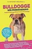 Bulldogge Welpenerziehung: Englische Bulldogge Welpentraining für Einsteiger - Entwicklung, Eingewöhnung, Bindung, Stubenreinheit, Erziehung und Futter