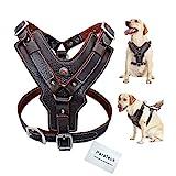 Wishdeal Hundegeschirr aus Echtem Leder langlebig Verstellbar für Große Hunde Schnelle Kontrolle mit Griff Haustierzubehör für K9 Labrador (M)