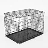 PawHut Transportkäfig Drahtkäfig Hundebox Hundekäfig Transportbox Reisebox mit 2 Türen 2 Farben in 5 Größen (Schwarz, M)