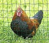 Landkaufhaus Mayer Hundezaun Katzenzaun Hühnerzaun 25m grün +9 Pfähle Hütezaun Hütenetz Hunde/Katzen-Zaun Einzäunung