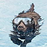 Namsan Hundebrille Netive Haustier-Sonnenbrille Wasserdicht Winddicht Augenschutz für Groß/Mittel Hund