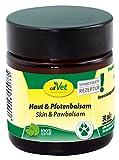 cdVet Naturprodukte Haut & Pfotenbalsam 30 ml - Hund - Pflegemittel - überempfindliche + trockene + schuppige Haut - Schutz vor Umwelteinflüssen - Haut + Pfotenschutz - Gesundheit - 100% Natur -