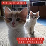 Thundershirts for Everyone
