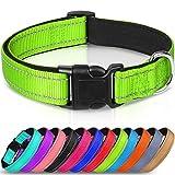 Joytale Hundehalsband für Kleine Hund, Reflektierend Halsband Hund Breit für Mittlere Hunde, Gepolstert Hundehalsbänder, Grün