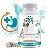 Ida Plus – Darmbiotic 120 Tabletten – Darm gesund durch Probiotika – Innovative Darmbakterien zur Regulierung der Verdauung – Darmsanierung für den Hund – bei Durchfall – Immunsystem stärken 1ner Set