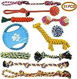 Docatgo Welpenspielzeug, 11 Pcs Dauerhaft Hundespielzeug Seil Ball Hunde Kauen Spielzeug Set Für Kleine große mittelgroßen Hund Interaktives Spielset