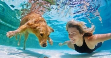 Woman With Dog Swimming Underwater