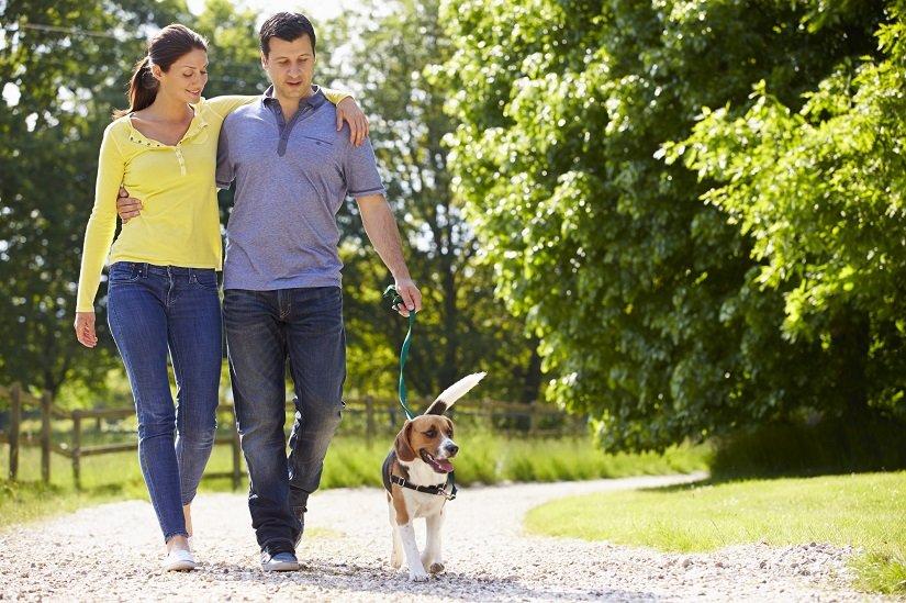 Junges Paar beim Spazieren mit dem Hund.