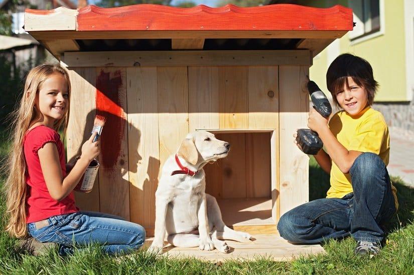 Eine isolierte Hundehütte kann man auch selbst bauen