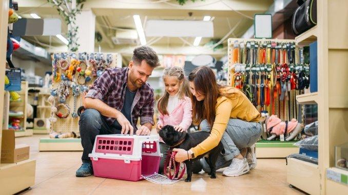 Hundetransportboxen: praktisch und vielseitig anwendbar!