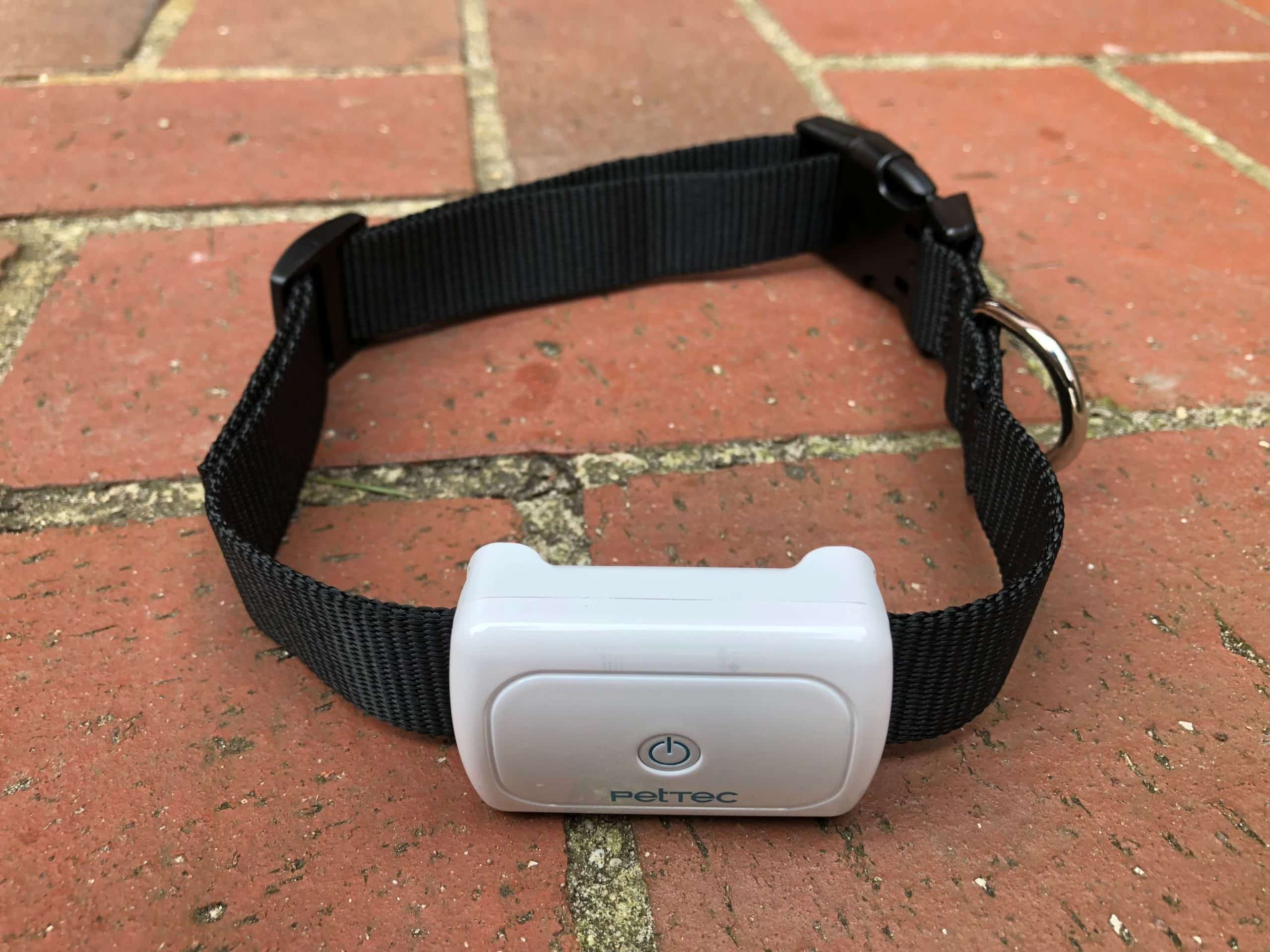 PetTec GPS Tracker an das Halsband montiert