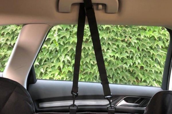 Floxik Autoschondecke für Hunde mit Seitenschutz für den Rücksitz_0609