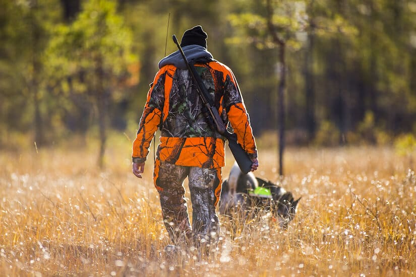 Gebrauchshunde bei der Jagd