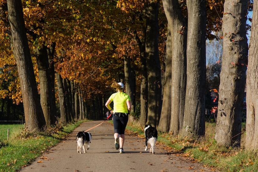 Frau mit zwei Hunden an einer Joggingleine für Hunde