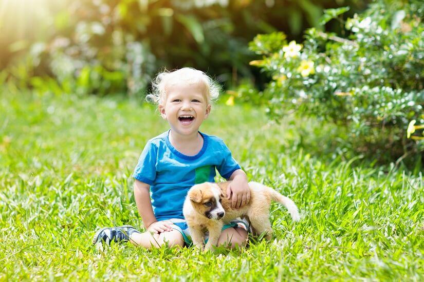 Kind spielt mit Welpe