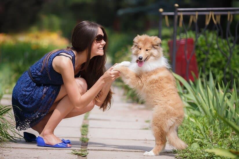 junge Frau spielt mit einem Hund