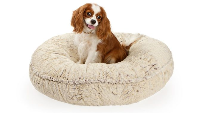 Das ovale Hundekissen