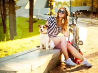 Fahrradhalterung für den Hund