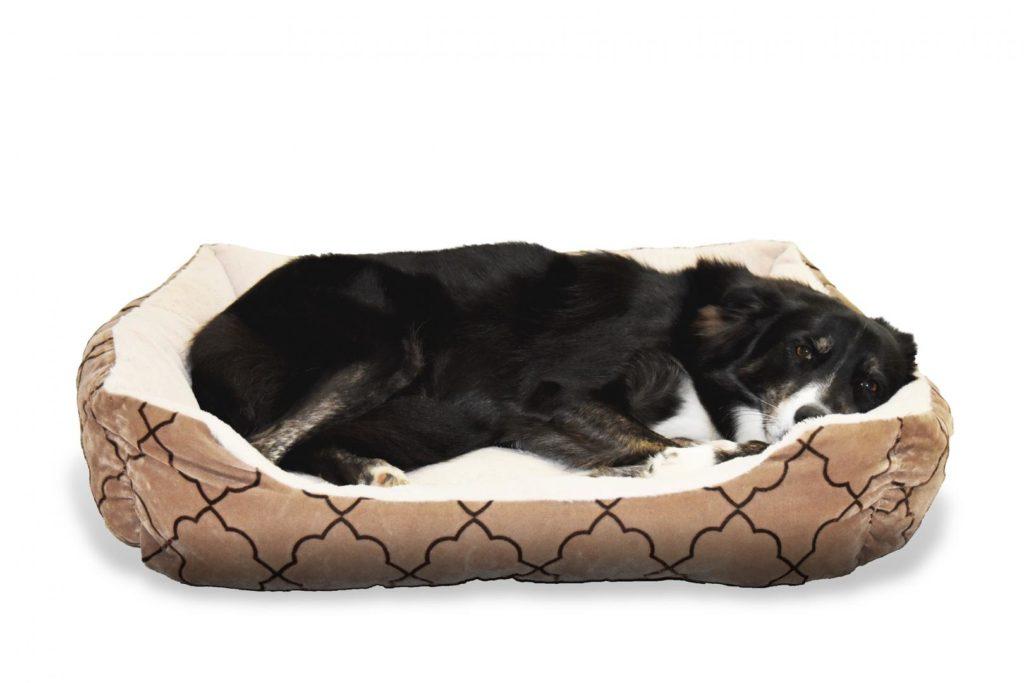 Hundebett mit erhöhtem Rand