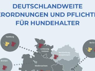 Pflichten für Hundehalter in Deutschland