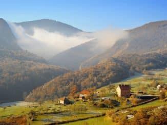 Die Balkanbracke