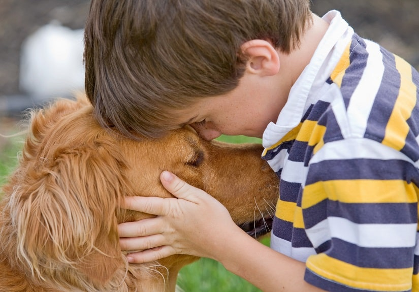 Auch ohne Leckerlis kann man einen Hund erziehen